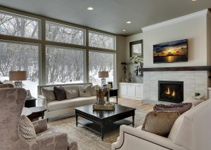 Gorgeous Staged Living Room with MN Background